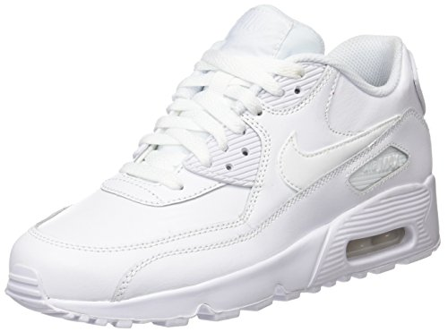 02b1933e3f UPC 826218436079   Nike 833412-100 Kid's Air Max 90 Leather Running ...